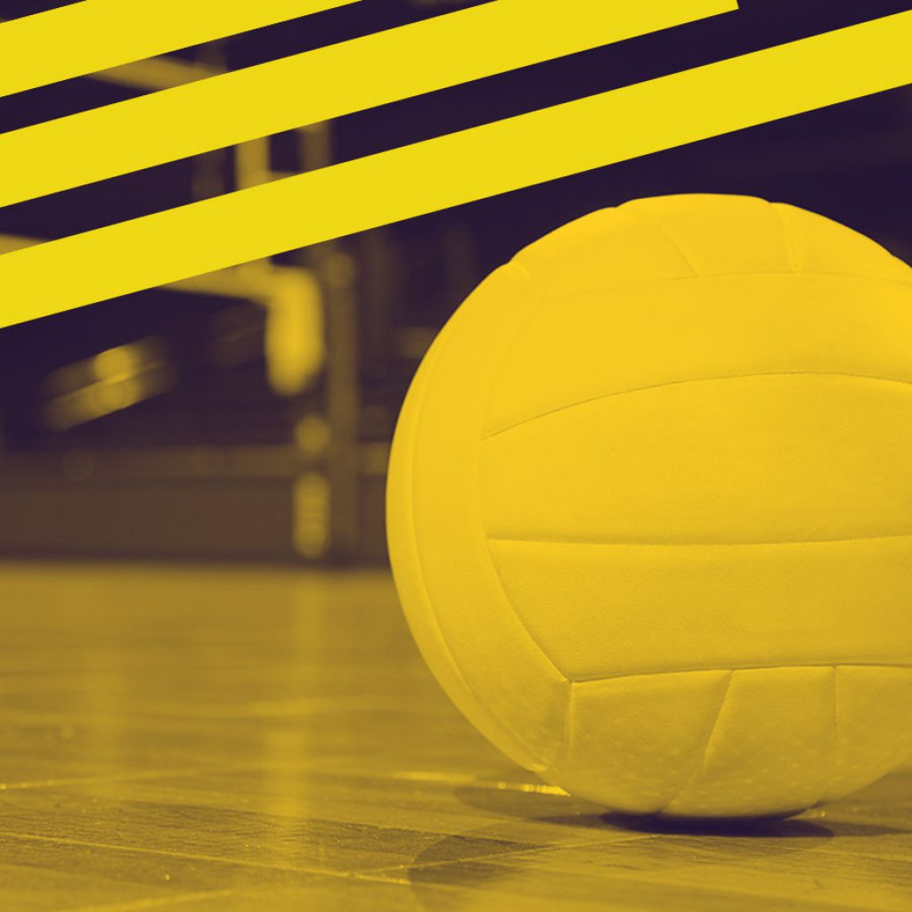 Volleyball bets tips.